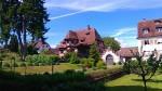 Insel Reichenau 2017